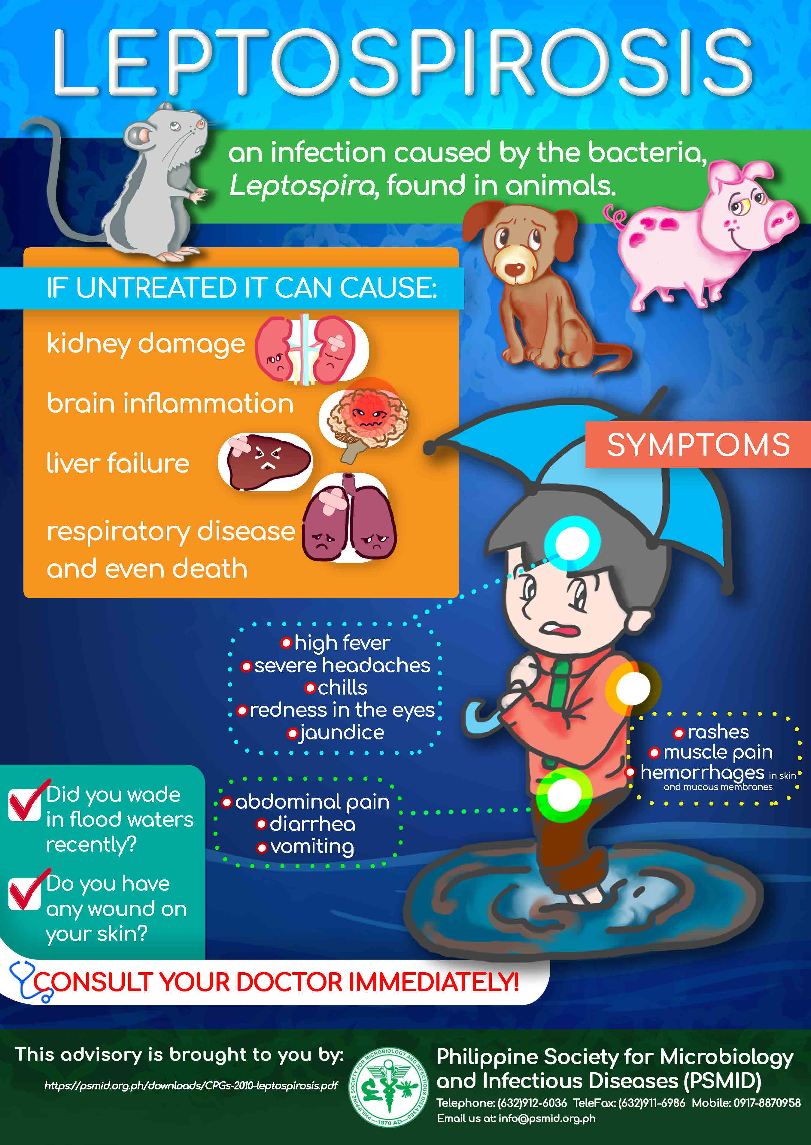 LEPTOSPIROSIS INFOGRAPHIC 2